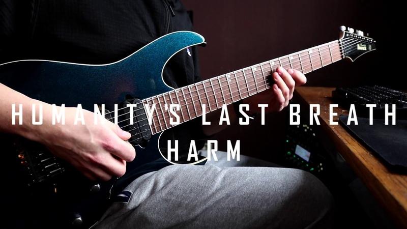Humanitys Last Breath - Harm (Guitar Cover)
