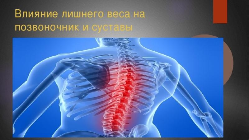 Влияние потери веса на позвоночник и мозг.