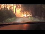 Отец с сыном оказались в ловушке лесного пожара
