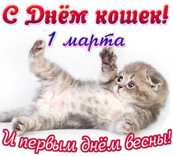 http://cs409126.vk.me/v409126582/b2f2/UyxrmEevb4E.jpg
