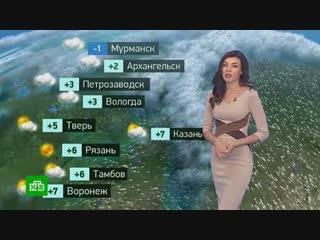 Утренний прогноз погоды на 26октября