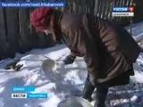 Вести-Хабаровск.  Проблемы с водой в Бикине