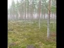 Utajärvi, finland