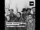 Рассказ выжившей узницы Освенцима