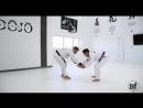 Leo Vieira - Standing Series – DLR Guard Pull To Single Leg