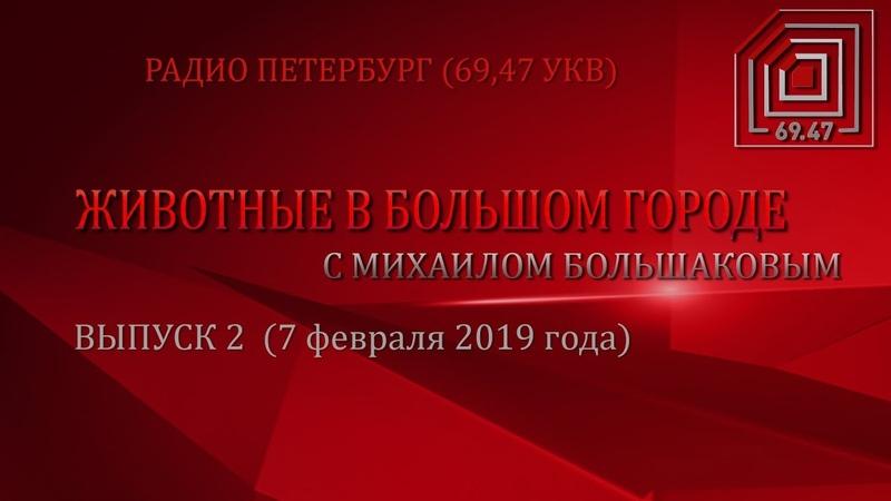 ЖИВОТНЫЕ В БОЛЬШОМ ГОРОДЕ (ВЫПУСК 2 от 07.02.2019)