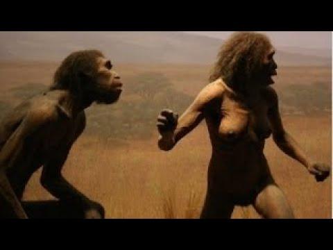 Первобытные люди. - Эволюция человека разумного. 2серия.