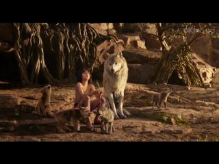 Книга джунглей (The Jungle Book) 2016. Русский ролик о фильме [1080p]