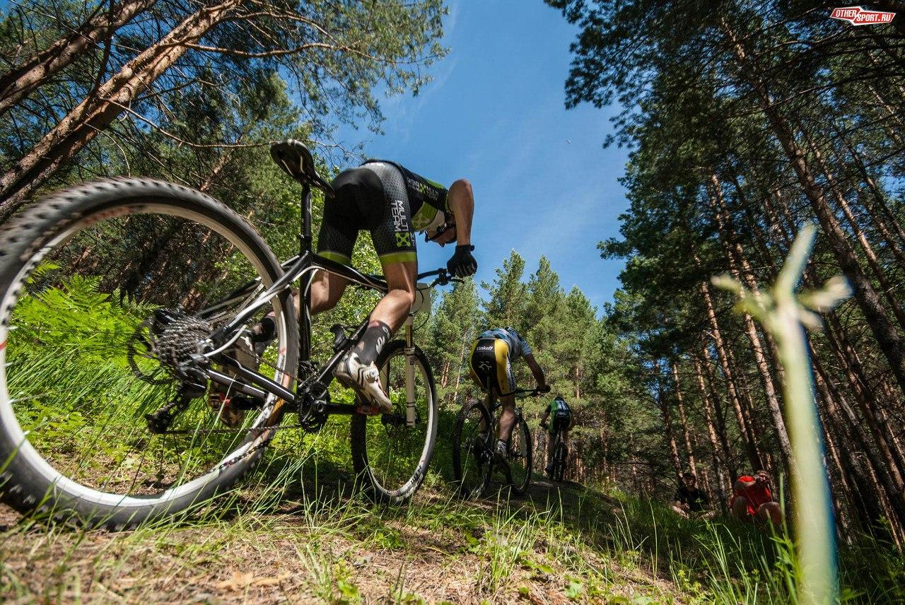 Перья - сложнейший компонент велосипеда