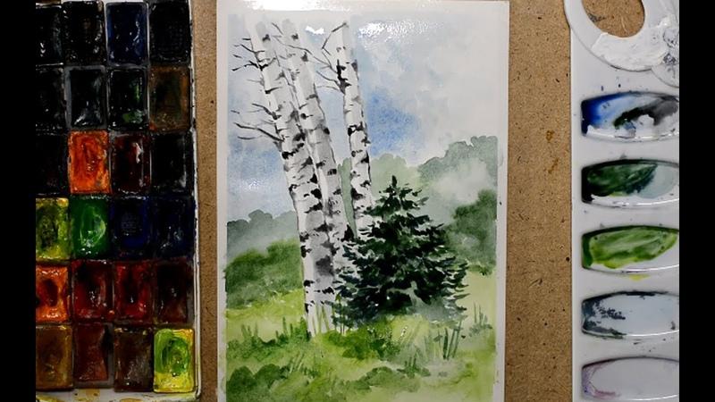 Рисуем пейзаж с березами акварелью / Drawing a landscape with birches in watercolor