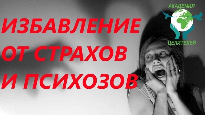 Практика Измени точку отсчёта. Как избавиться от страхов и психозов. Николай Пейчев.