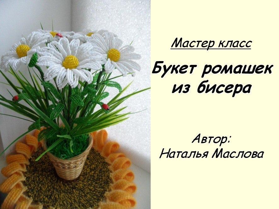 Хризантемы, астры, георгины, ромашки PMqCEIFOSKY