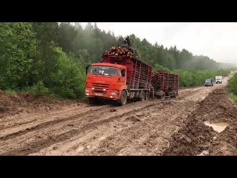 Дороги Подосиновского района. На границе с Лузким районом. Июль 2017 года.