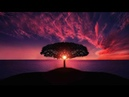 New Age Music Relaxing Music Reiki Music Yoga Music Relaxation Music Spa Music 🌅