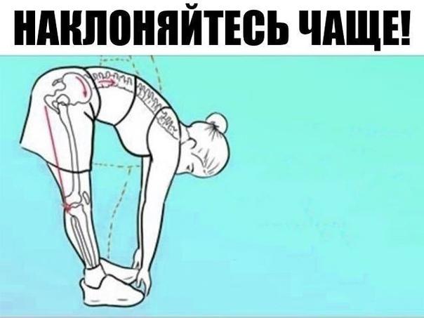 Поясничная мышца (the psoas muscle)  это самая глубокая мышца человеческого тела, влияющая на наш структурный баланс, мышечную интеграцию, гибкость, силу, диапазон движений, подвижность суставов и функционирование органов.