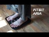 Обзор на умные весы Fitbit Aria!