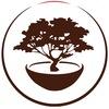 Китайский чай в Крыму   Чайные Истории