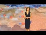Погода сегодня, завтра, видео прогноз погоды на 24.9.2018 в России и мире