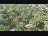 Вьетнам. путешествие из нячанга в далат. день 1