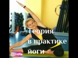 Семинар йога-терапия позвоночника