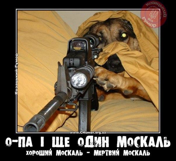 Похищение и вывоз летчицы Савченко были осуществлены по сговору террористов со спецслужбами РФ, - МИД - Цензор.НЕТ 8481