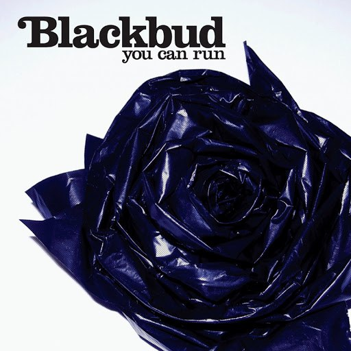 BlackBud альбом You Can Run