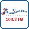Милицейская Волна Тула 103,3 FM