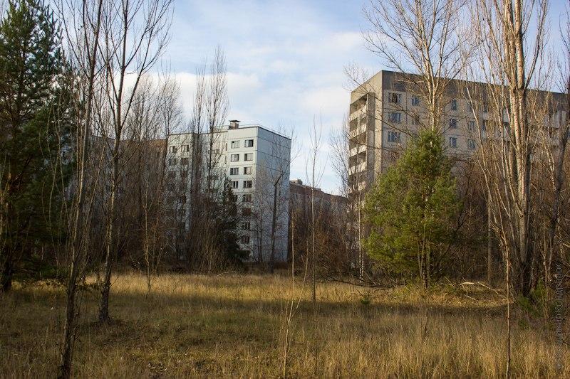 дома и лес Припять 2012