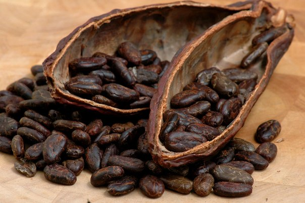 какао полезнее шоколада