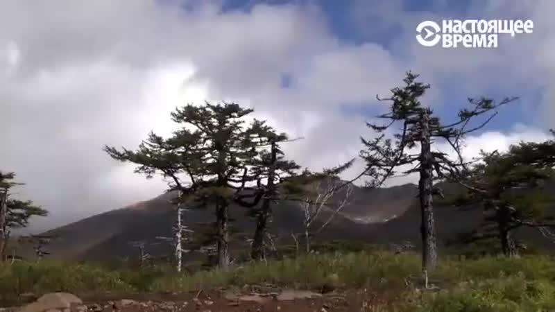 Тихоокеанская границы России Южные Курил ок Горный 360p mp4