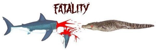 гребнистый крокодил или большая белая акула Видеообзоры Видео-обзор