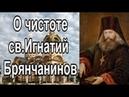 ✟О чистоте. св.Игнатий Брянчанинов. Аскетические опыты✟