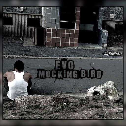 EVO альбом Mockingbird