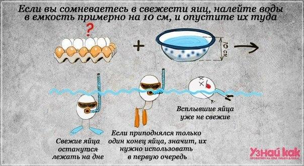 как проверить яйца на свежесть на воде фото