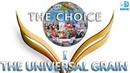 THE UNIVERSAL GRAIN Part One THE CHOICE