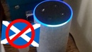 Amazon Alexa Can't Understand Scottish Accent