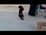 служение шиитского ребёнка для пилигримов имама Хусейна.