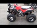 Квадроцикл Grizzly 250cc цепной привод