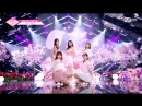 The Promise - See You Again (다시 만나) PRODUCE 48 180817 EP.10
