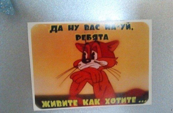 Семен Шмелев, Тюмень - фото №2