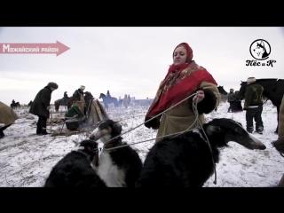 Зимняя Псовая Охота