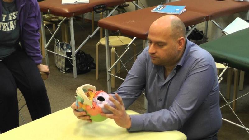 Краниосакральная остеопатия демонстрация шовных и венозных техник от А Смирнова Часть 1