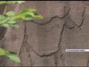 Учёные в Курагинском районе пытаются сохранить древние Шалаболинские петроглифы