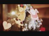 Новогодний в ролик в фотостудии - Дачники