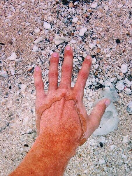 Угадайте, где самая прозрачная вода в мире? Голубое озеро, в Новой Зеландии, име...