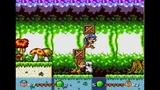 Squirrel King 2 player Sega Genesis pirate game 60fps
