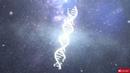 Mandragora Special M - Cosmic Calendar (VIDEO) - [[Full Visual Trippy Videos Set]] - [GetAFix]