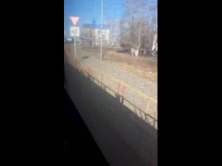 Шахзод Тойшиев - Live
