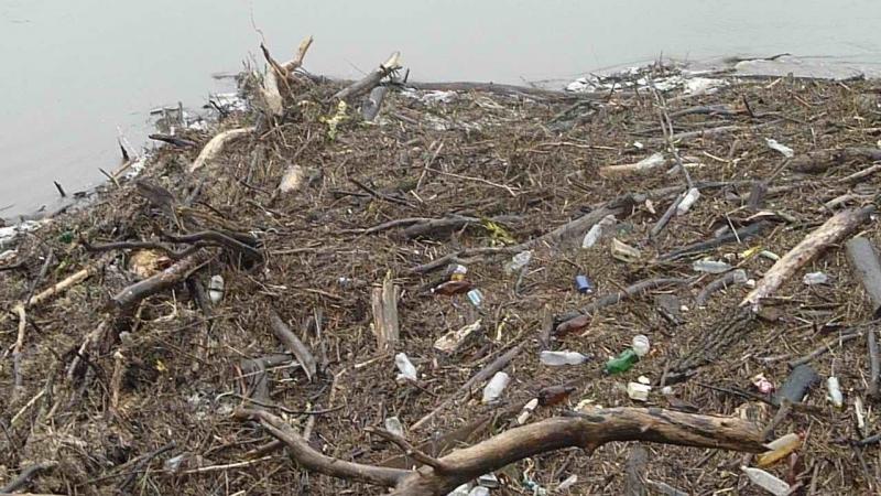 Причаливший мусор (2018)