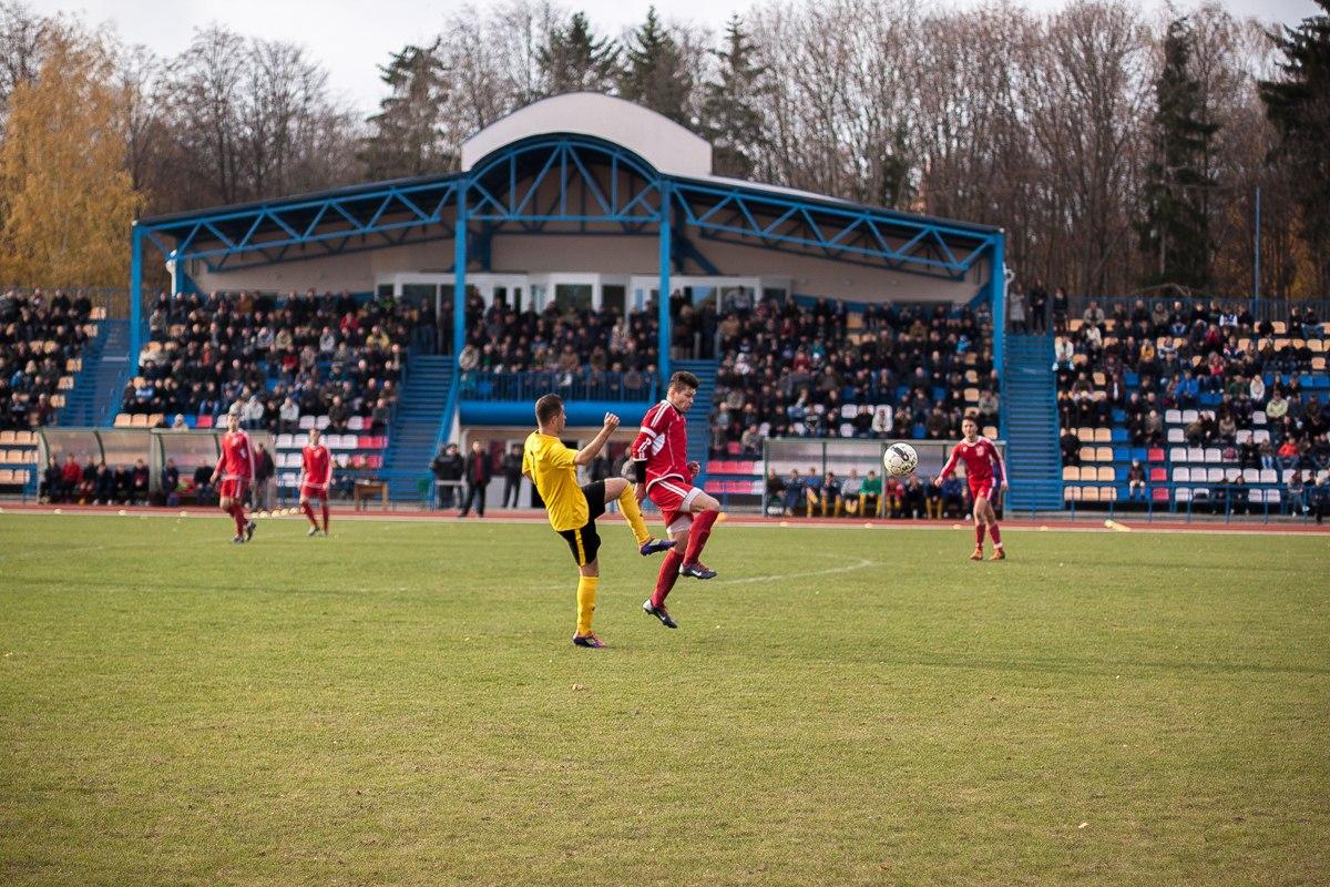 Количество зрителей в Кобрине